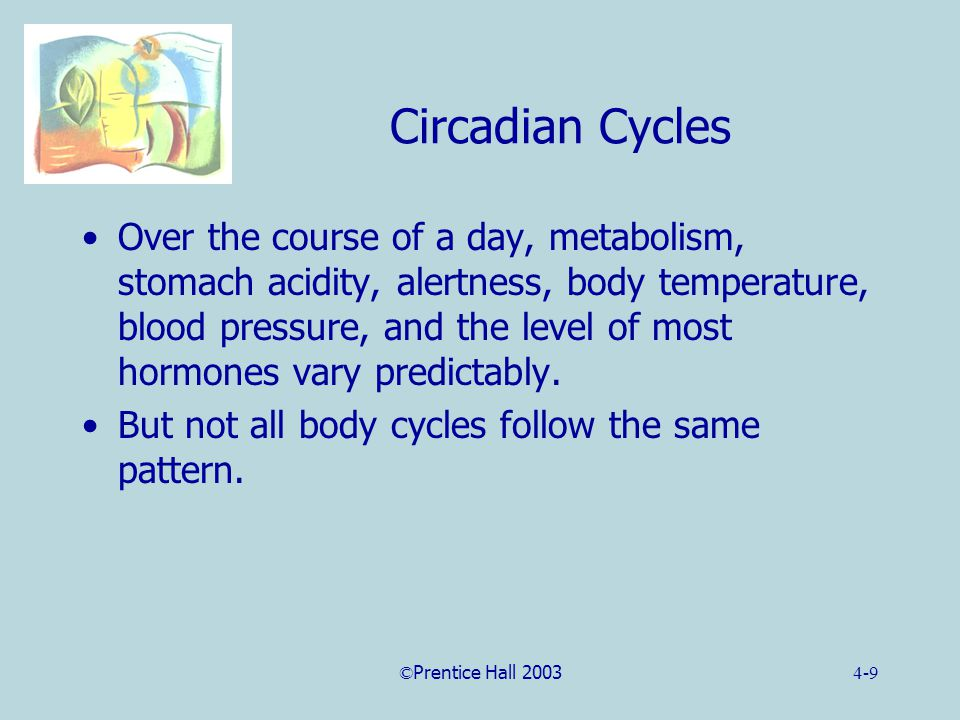 ©Prentice Hall 20034-9 Circadian Cycles Over the course of a day, metabolism, stomach acidity, alertness, body temperature, blood pressure, and the level of most hormones vary predictably.