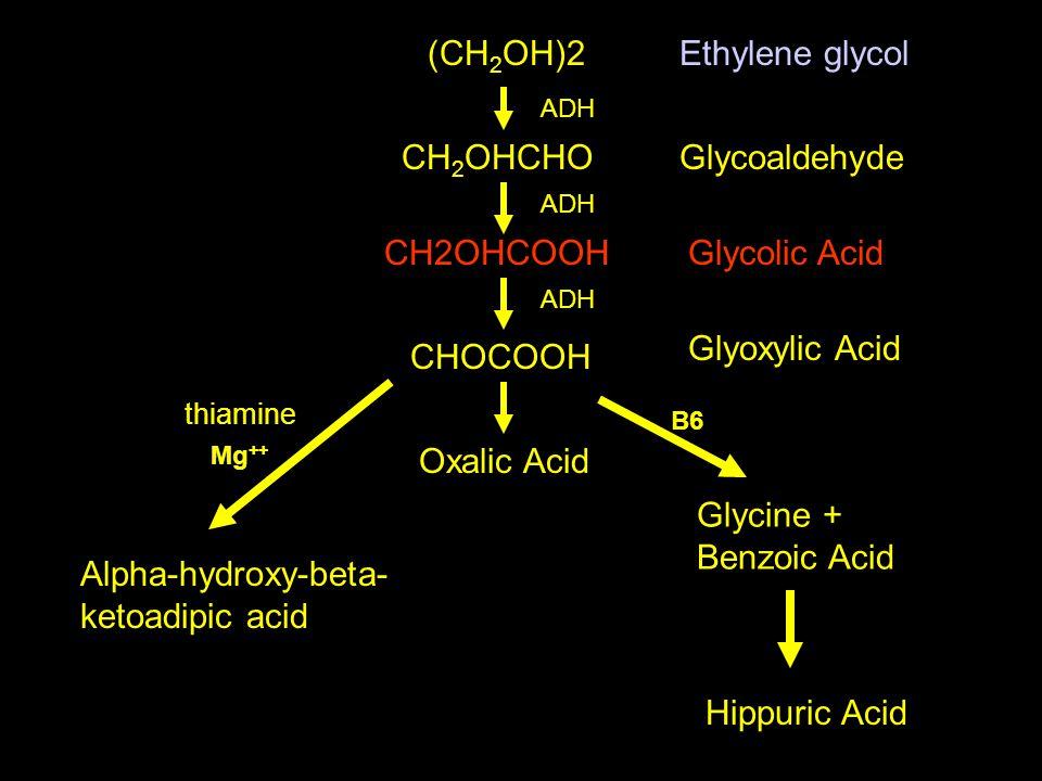 (CH 2 OH)2 CH 2 OHCHO Ethylene glycol Glycoaldehyde CH2OHCOOHGlycolic Acid CHOCOOH Glyoxylic Acid Glycine + Benzoic Acid Hippuric Acid Oxalic Acid Alpha-hydroxy-beta- ketoadipic acid thiamine Mg ++ B6 ADH