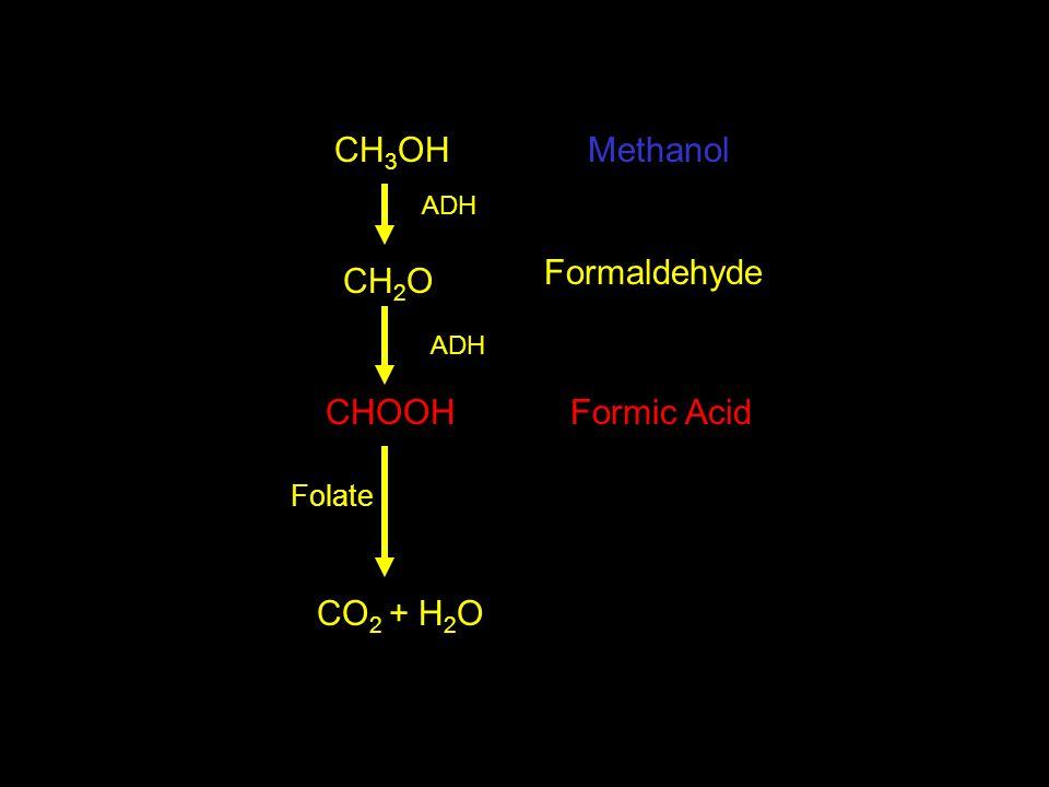 CH 3 OH CH 2 O CHOOH CO 2 + H 2 O Methanol Formaldehyde Formic Acid Folate ADH