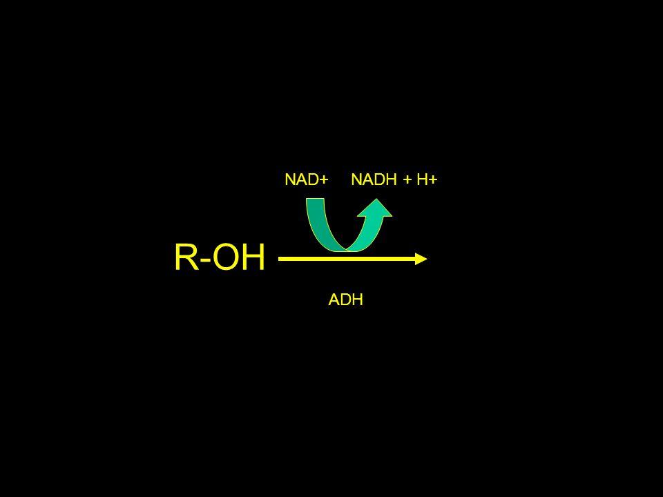 R-OH NAD+NADH + H+ ADH