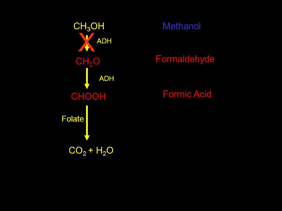 CH 3 OH CH 2 O CHOOH CO 2 + H 2 O Methanol Formaldehyde Formic Acid Folate ADH X