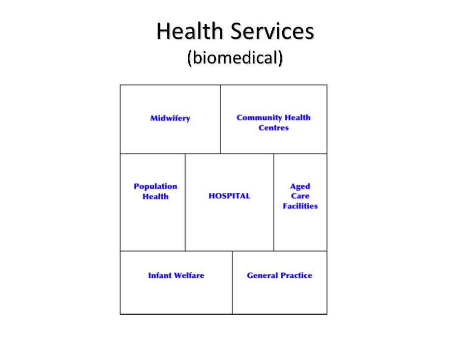 Health Services (biomedical)