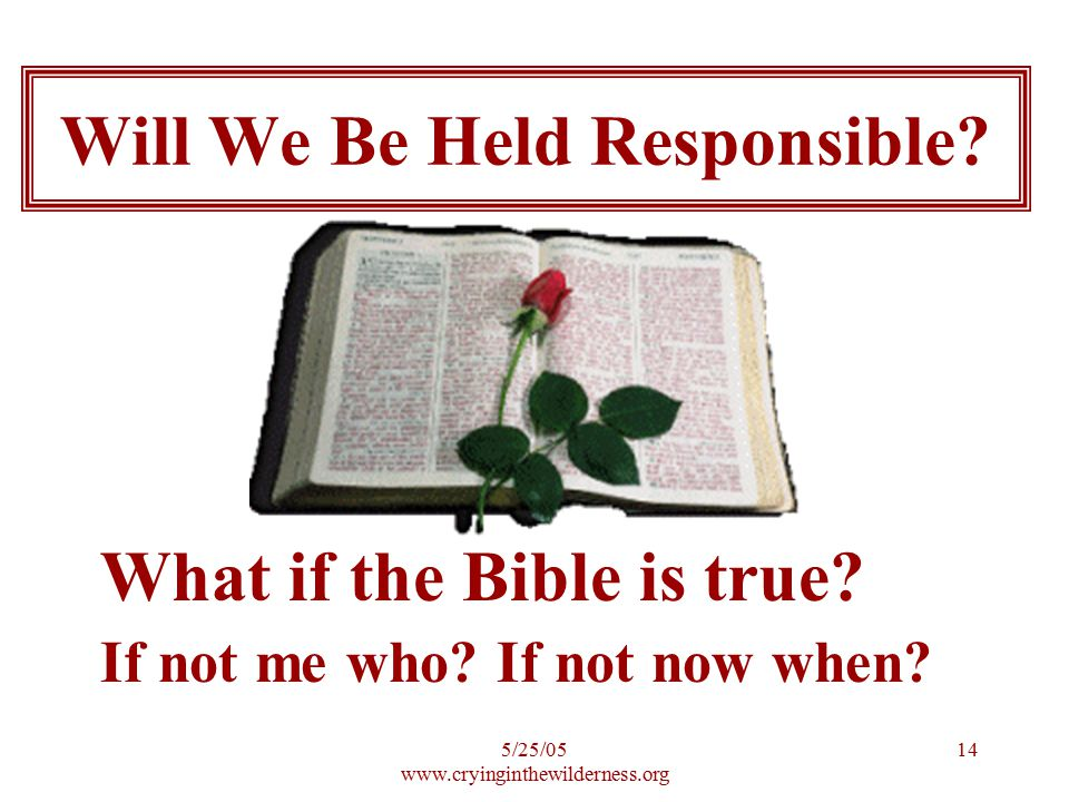 5/25/05 www.cryinginthewilderness.org 14 What if the Bible is true? If not me who? If not now when? Will We Be Held Responsible?