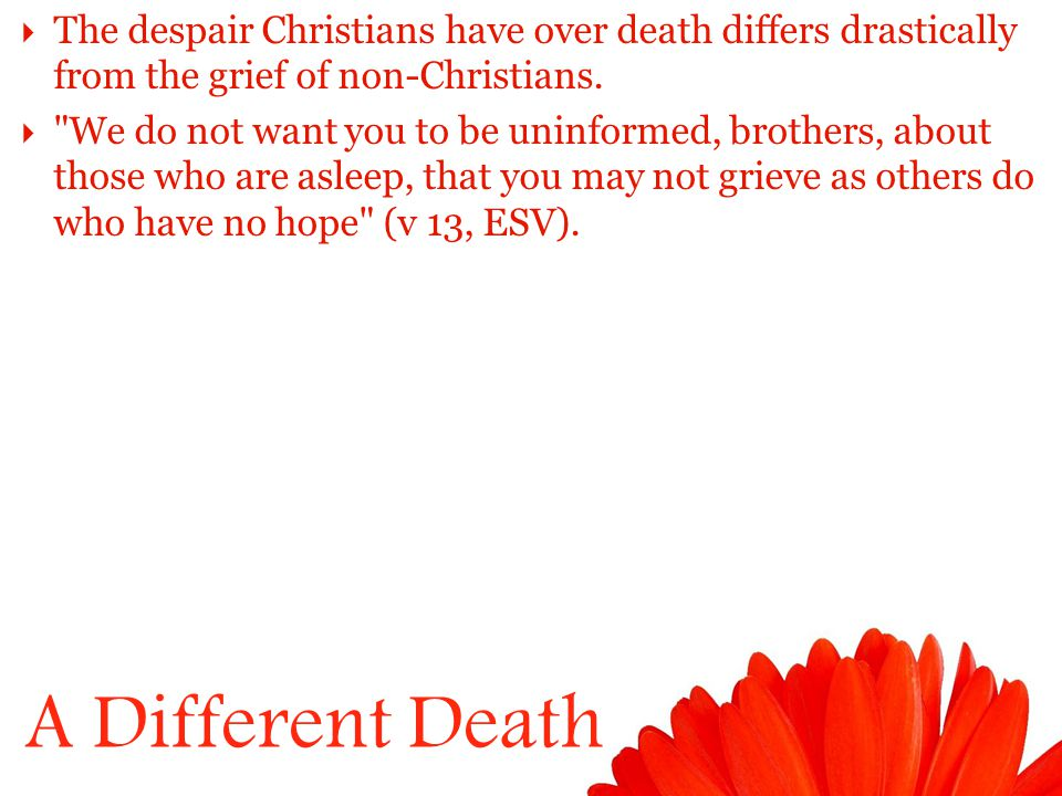 A Different Death  The despair Christians have over death differs drastically from the grief of non-Christians.