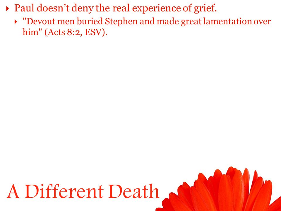 A Different Death  Paul doesn't deny the real experience of grief.