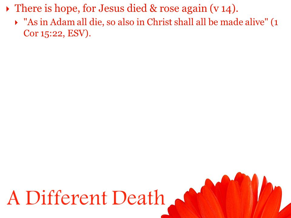 A Different Death  There is hope, for Jesus died & rose again (v 14).