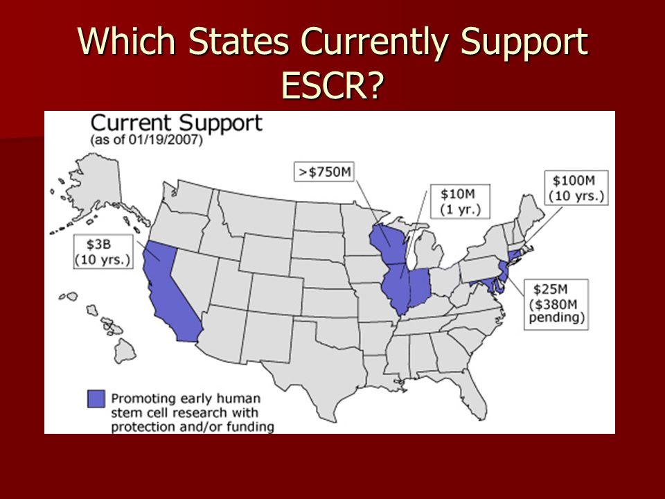 Which States Currently Support ESCR?