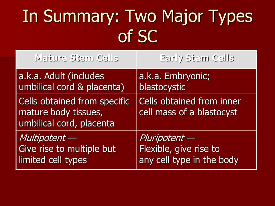 In Summary: Two Major Types of SC Mature Stem Cells Early Stem Cells a.k.a. Adult (includes umbilical cord & placenta) a.k.a. Embryonic; blastocystic