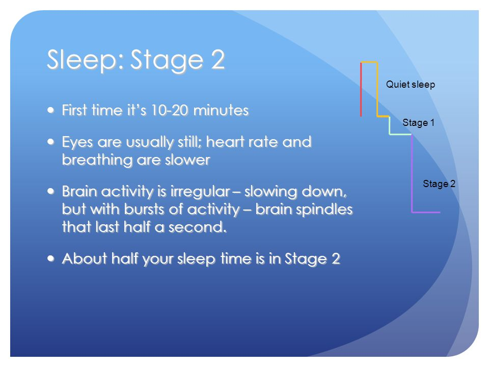 Sleep: Stage 2 First time it's 10-20 minutes First time it's 10-20 minutes Eyes are usually still; heart rate and breathing are slower Eyes are usually still; heart rate and breathing are slower Brain activity is irregular – slowing down, but with bursts of activity – brain spindles that last half a second.