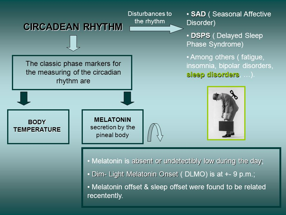 CIRCADEAN RHYTHM The classic phase markers for the measuring of the circadian rhythm are BODY TEMPERATURE MELATONIN secretion by the pineal body absent or undetectibly low during the day Melatonin is absent or undetectibly low during the day; Dim- Light Melatonin Onset Dim- Light Melatonin Onset ( DLMO) is at +- 9 p.m.; Melatonin offset & sleep offset were found to be related recentently.