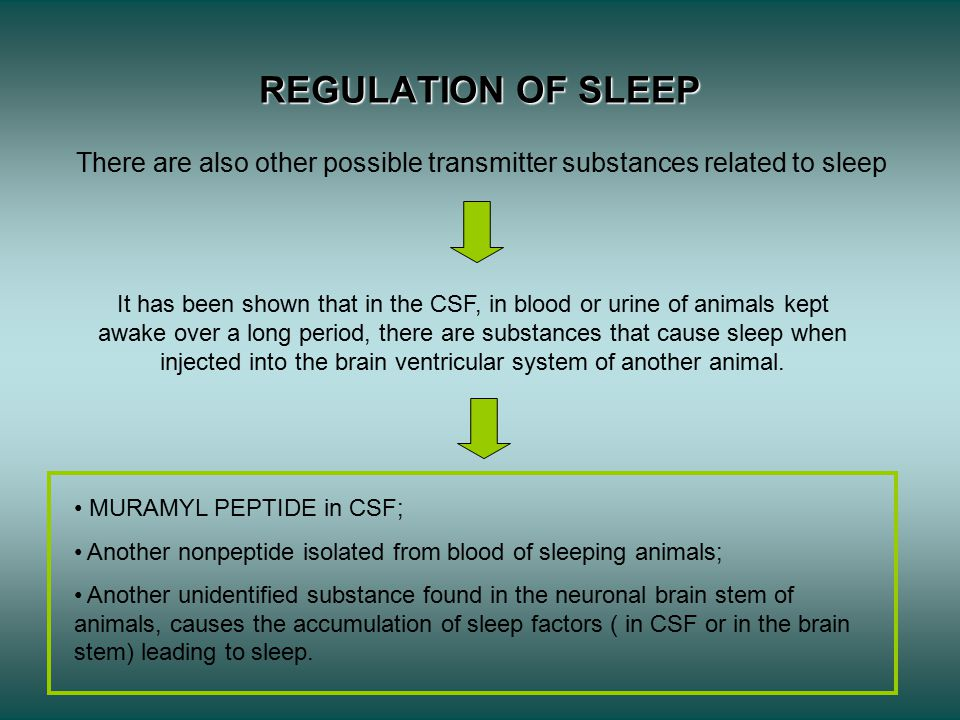 REGULATION OF SLEEP There are also other possible transmitter substances related to sleep It has been shown that in the CSF, in blood or urine of animals kept awake over a long period, there are substances that cause sleep when injected into the brain ventricular system of another animal.