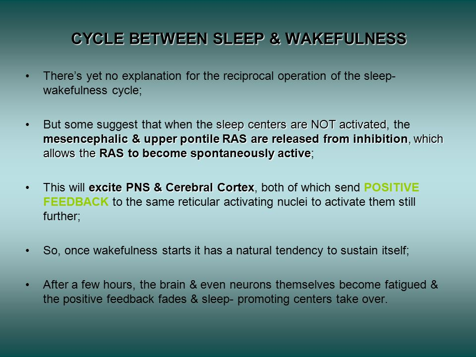 CYCLE BETWEEN SLEEP & WAKEFULNESS There's yet no explanation for the reciprocal operation of the sleep- wakefulness cycle; sleep centers are NOT activated mesencephalic & upper pontile RAS are released from inhibition, which allows the RAS to become spontaneously activeBut some suggest that when the sleep centers are NOT activated, the mesencephalic & upper pontile RAS are released from inhibition, which allows the RAS to become spontaneously active; excite PNS & Cerebral CortexThis will excite PNS & Cerebral Cortex, both of which send POSITIVE FEEDBACK to the same reticular activating nuclei to activate them still further; So, once wakefulness starts it has a natural tendency to sustain itself; After a few hours, the brain & even neurons themselves become fatigued & the positive feedback fades & sleep- promoting centers take over.