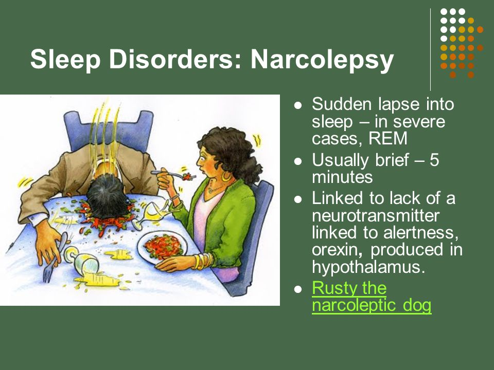 Sleep Disorders: Narcolepsy Sudden lapse into sleep – in severe cases, REM Usually brief – 5 minutes Linked to lack of a neurotransmitter linked to alertness, orexin, produced in hypothalamus.