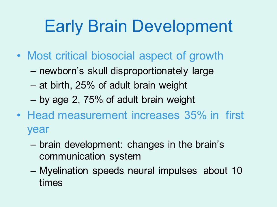 Infant Cognition