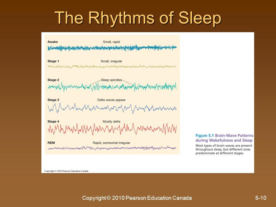 The Rhythms of Sleep Copyright © 2010 Pearson Education Canada5-10