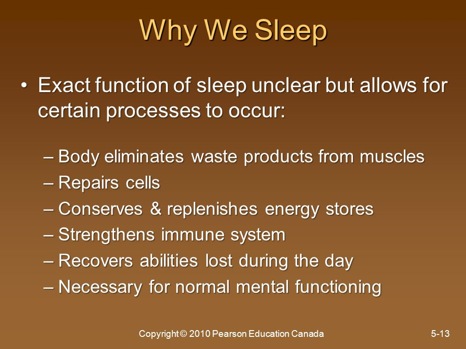 Why We Sleep Exact function of sleep unclear but allows for certain processes to occur:Exact function of sleep unclear but allows for certain processes to occur: –Body eliminates waste products from muscles –Repairs cells –Conserves & replenishes energy stores –Strengthens immune system –Recovers abilities lost during the day –Necessary for normal mental functioning Copyright © 2010 Pearson Education Canada5-13