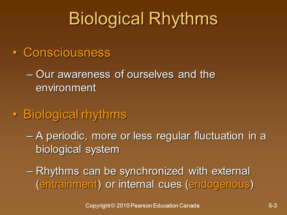 Copyright © 2010 Pearson Education Canada5-3 Biological Rhythms ConsciousnessConsciousness –Our awareness of ourselves and the environment Biological rhythmsBiological rhythms –A periodic, more or less regular fluctuation in a biological system –Rhythms can be synchronized with external (entrainment) or internal cues (endogenous)