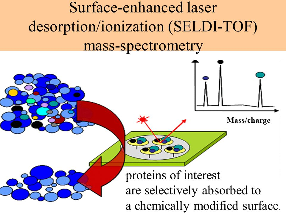 Surface-enhanced laser desorption/ionization (SELDI-TOF) mass-spectrometry proteins of interest are selectively absorbed to a chemically modified surface.