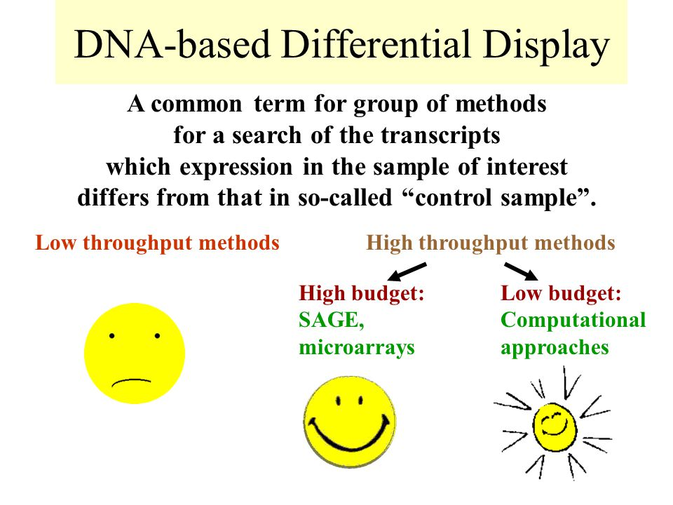 DNA-based Differential Display A common term for group of methods for a search of the transcripts which expression in the sample of interest differs from that in so-called control sample .