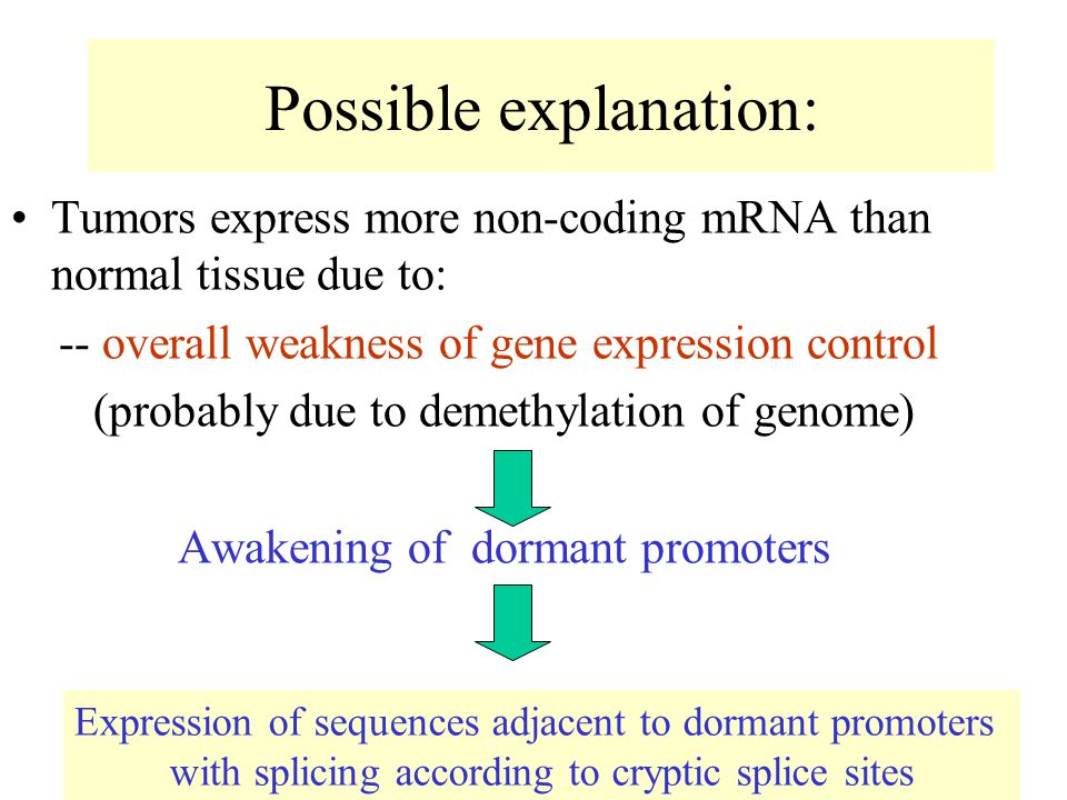 Possible explanation: Tumors express more non-coding mRNA than normal tissue due to: -- overall weakness of gene expression control (probably due to demethylation of genome) Awakening of dormant promoters Expression of sequences adjacent to dormant promoters with splicing according to cryptic splice sites