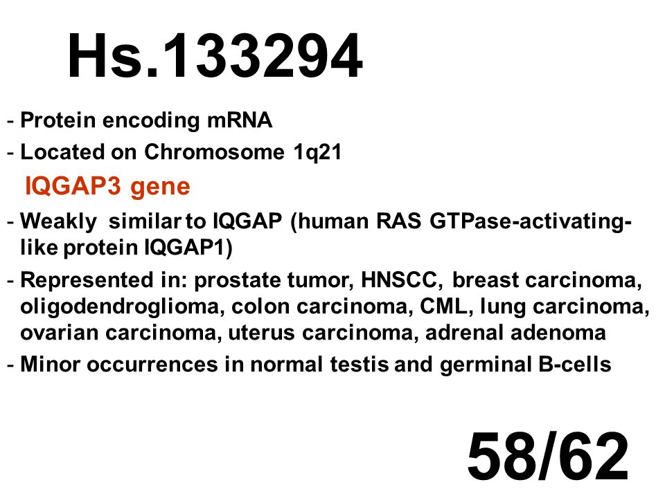 Hs.133294 -Protein encoding mRNA -Located on Chromosome 1q21 IQGAP3 gene -Weakly similar to IQGAP (human RAS GTPase-activating- like protein IQGAP1) -