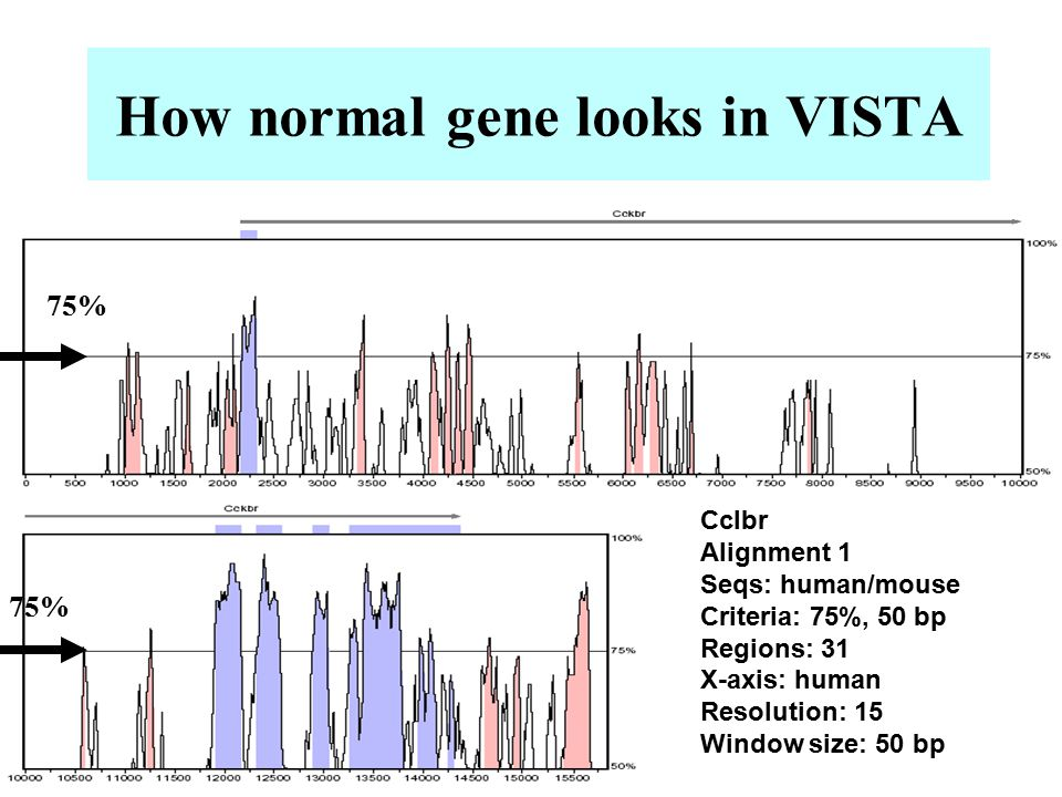 How normal gene looks in VISTA Cclbr Alignment 1 Seqs: human/mouse Criteria: 75%, 50 bp Regions: 31 X-axis: human Resolution: 15 Window size: 50 bp 75%