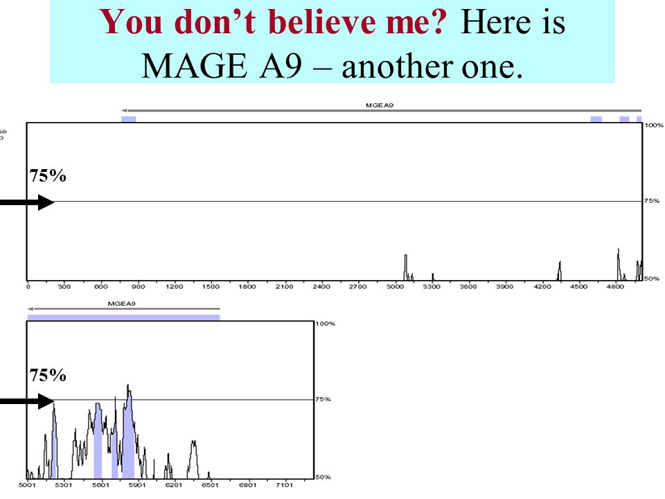 You don't believe me Here is MAGE A9 – another one. 75%