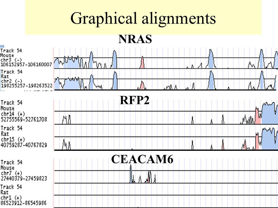Graphical alignments NRAS RFP2 CEACAM6