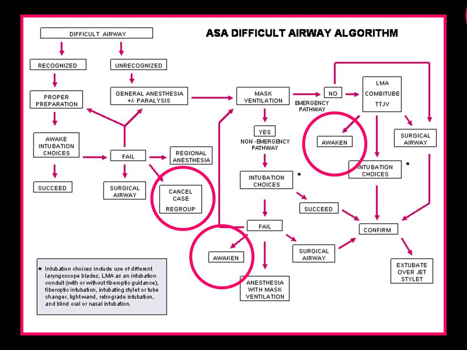 Emergency Medicine Our Options Are Different Anesthesiology Plan in advance Plan in advance Can't get airway...