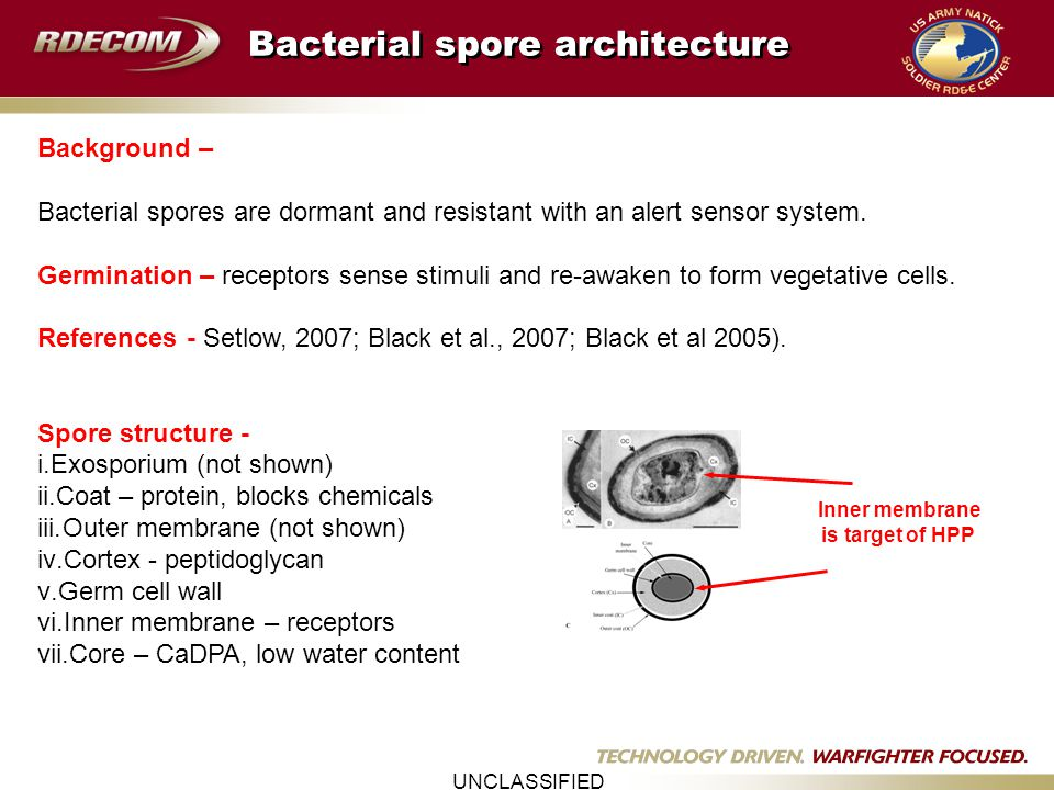 UNCLASSIFIED Predictive Microbial Modeling Predictive models are essential tools for assessing microbial inactivation kinetics and ensuring food safety of commercial products, and saving time, money, and labor.