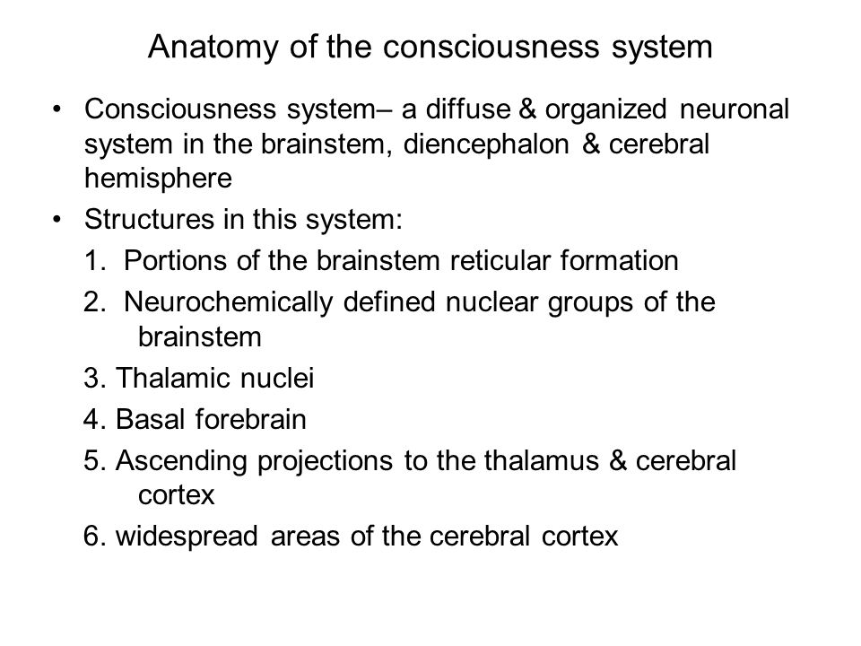 Anatomy of the consciousness system Consciousness system– a diffuse & organized neuronal system in the brainstem, diencephalon & cerebral hemisphere Structures in this system: 1.