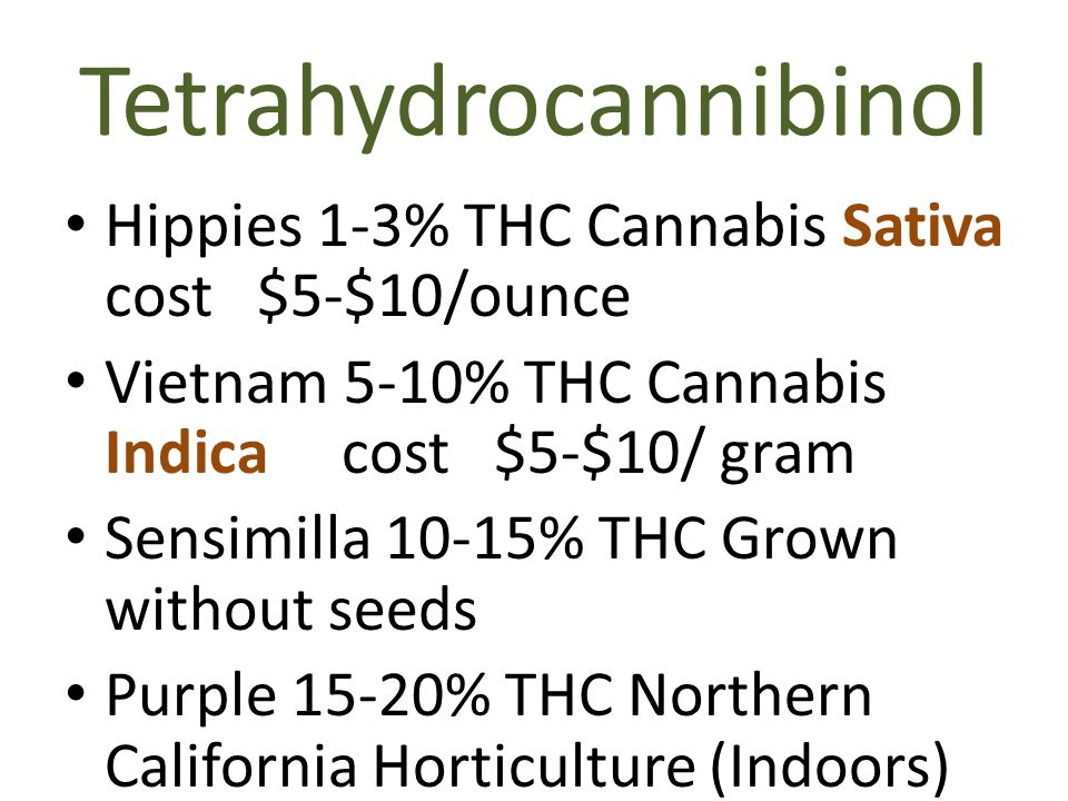 Tetrahydrocannibinol Hippies 1-3% THC Cannabis Sativa cost $5-$10/ounce Vietnam 5-10% THC Cannabis Indica cost $5-$10/ gram Sensimilla 10-15% THC Grown without seeds Purple 15-20% THC Northern California Horticulture (Indoors)