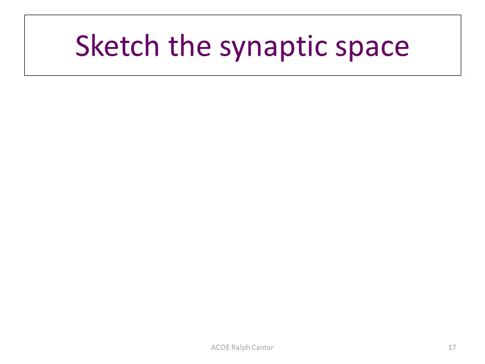 ACOE Ralph Cantor17 Sketch the synaptic space