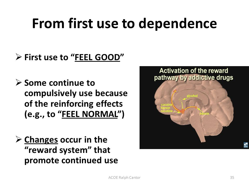 ACOE Ralph Cantor35 From first use to dependence  First use to FEEL GOOD  Some continue to compulsively use because of the reinforcing effects (e.g., to FEEL NORMAL )  Changes occur in the reward system that promote continued use