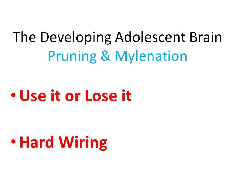 Use it or Lose it Hard Wiring The Developing Adolescent Brain Pruning & Mylenation
