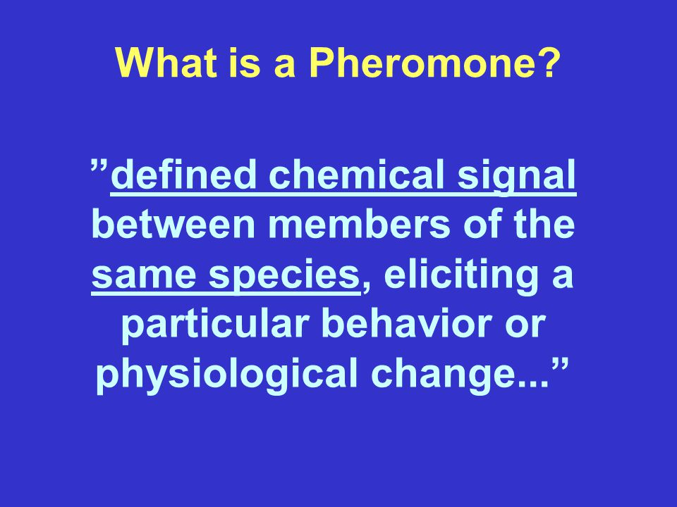 What is a Pheromone.