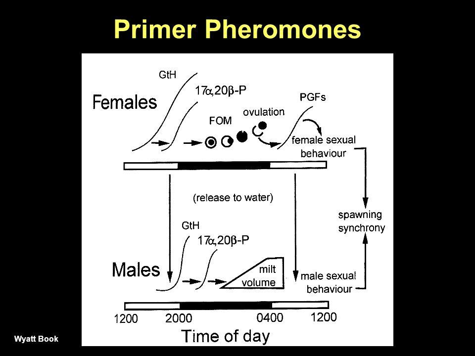 Primer Pheromones Wyatt Book