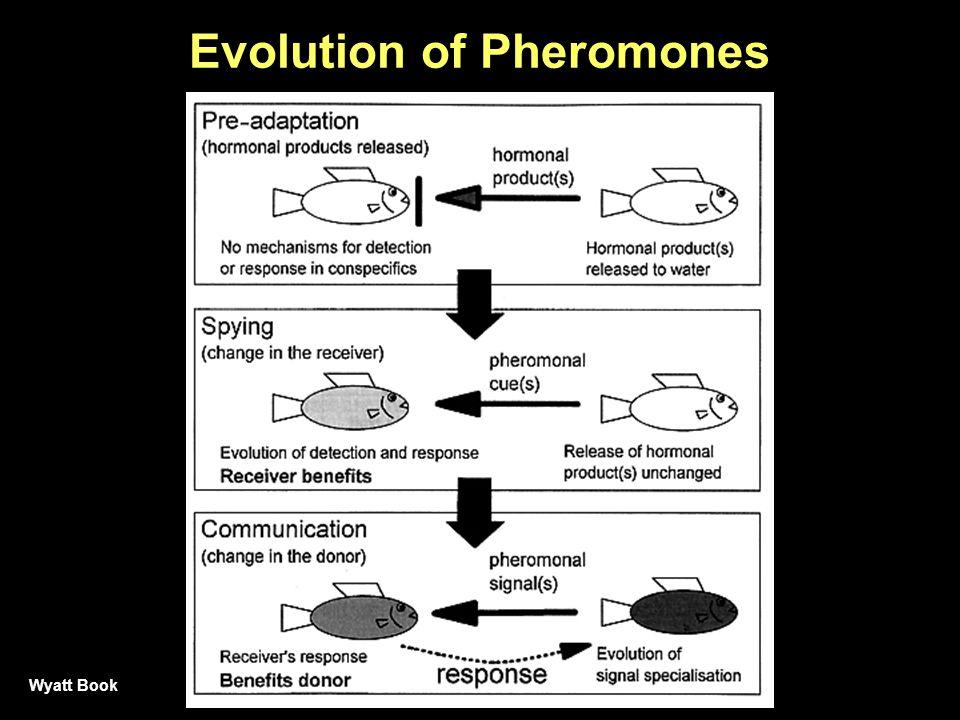 Evolution of Pheromones Wyatt Book