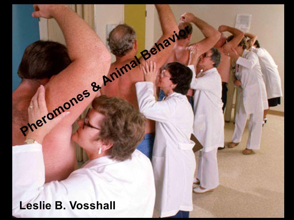 Leslie B. Vosshall Pheromones & Animal Behavior