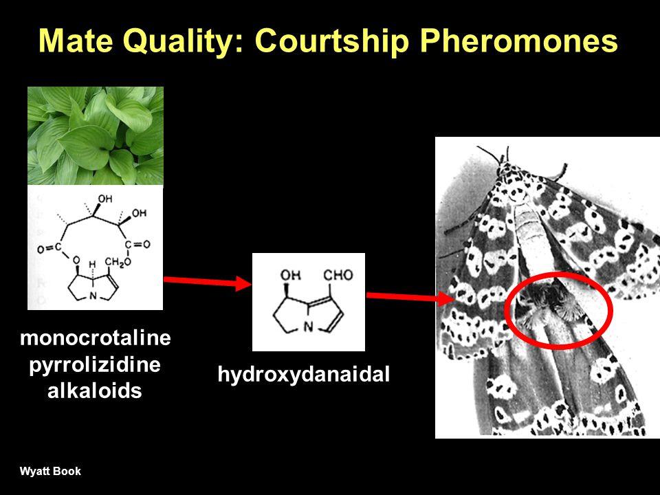 Mate Quality: Courtship Pheromones hydroxydanaidal monocrotaline pyrrolizidine alkaloids Wyatt Book