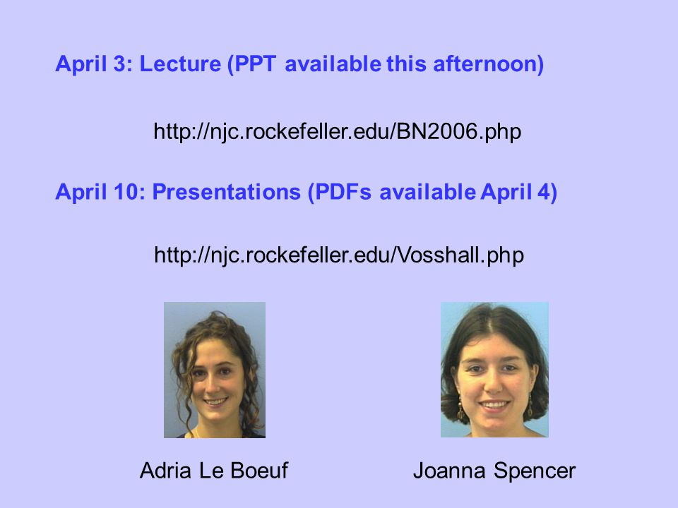 http://njc.rockefeller.edu/BN2006.php http://njc.rockefeller.edu/Vosshall.php Adria Le BoeufJoanna Spencer April 10: Presentations (PDFs available April 4) April 3: Lecture (PPT available this afternoon)