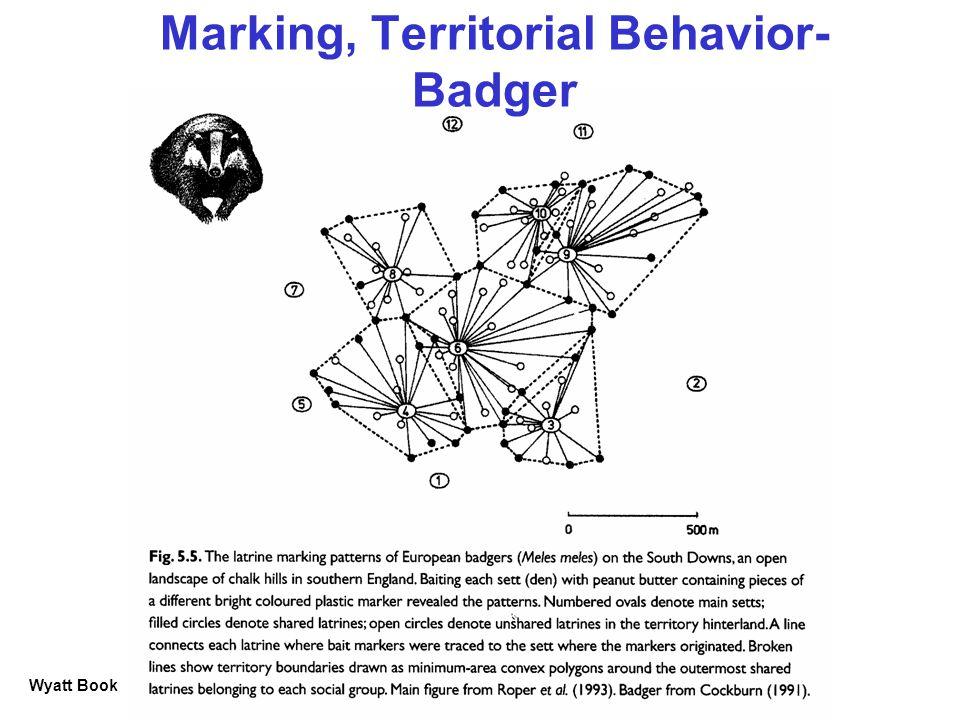 Marking, Territorial Behavior- Badger Wyatt Book