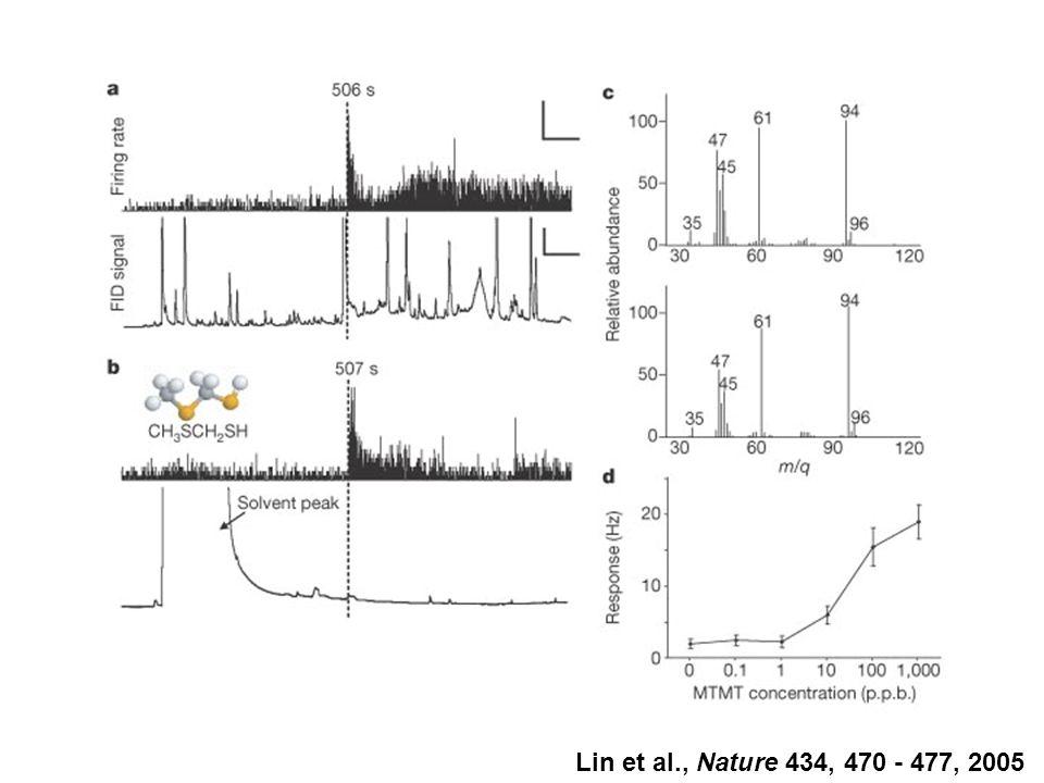 Lin et al., Nature 434, 470 - 477, 2005