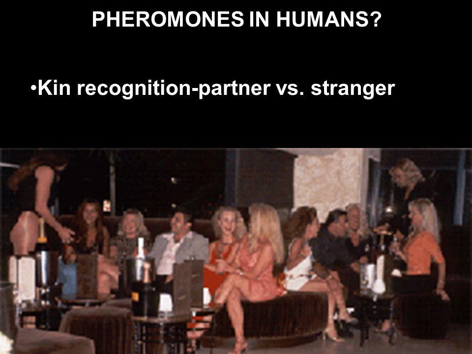 PHEROMONES IN HUMANS? Kin recognition-partner vs. stranger