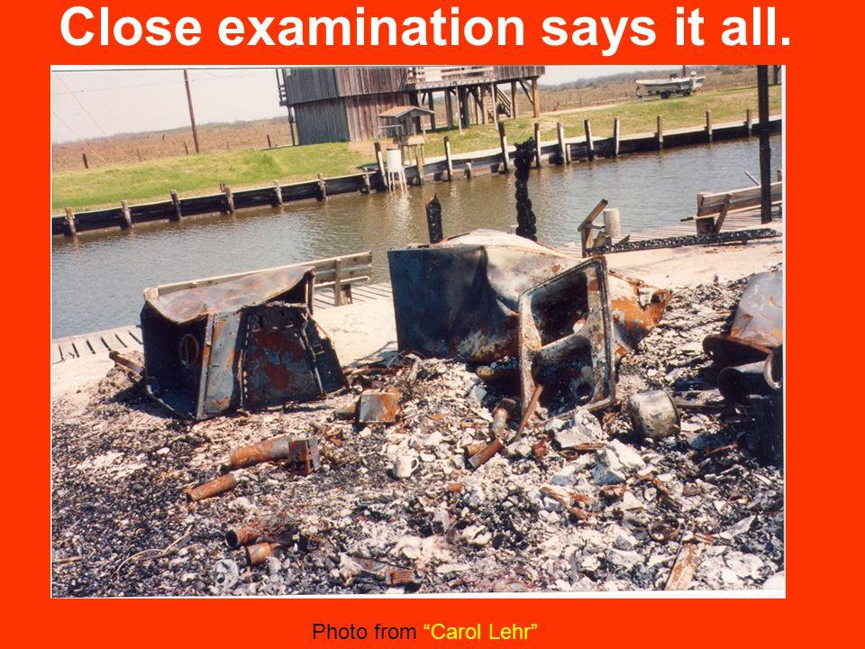 Close examination says it all. Photo from Carol Lehr