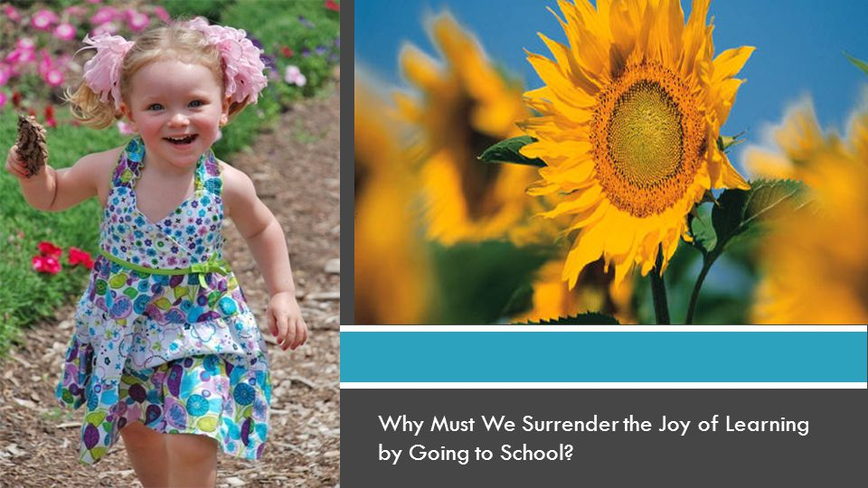 Why Must We Surrender the Joy of Learning by Going to School?