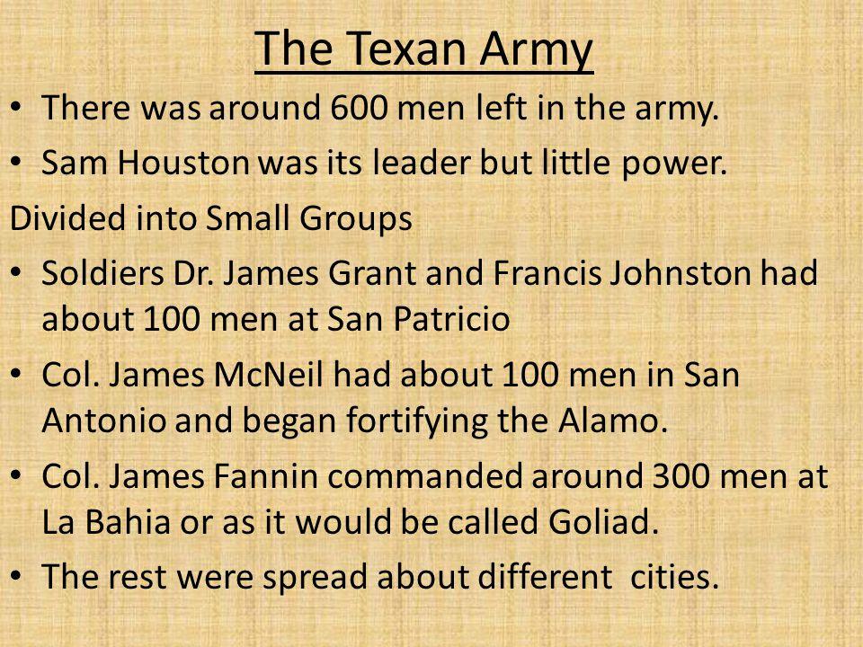 Mexican Army Santa Anna had taken his brother in law Cos' defeat in San Antonio personally.