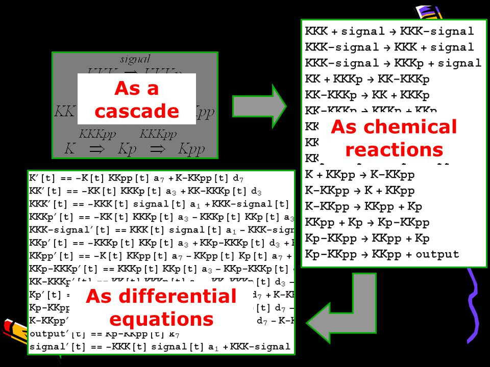 As chemical reactions As a cascade As differential equations