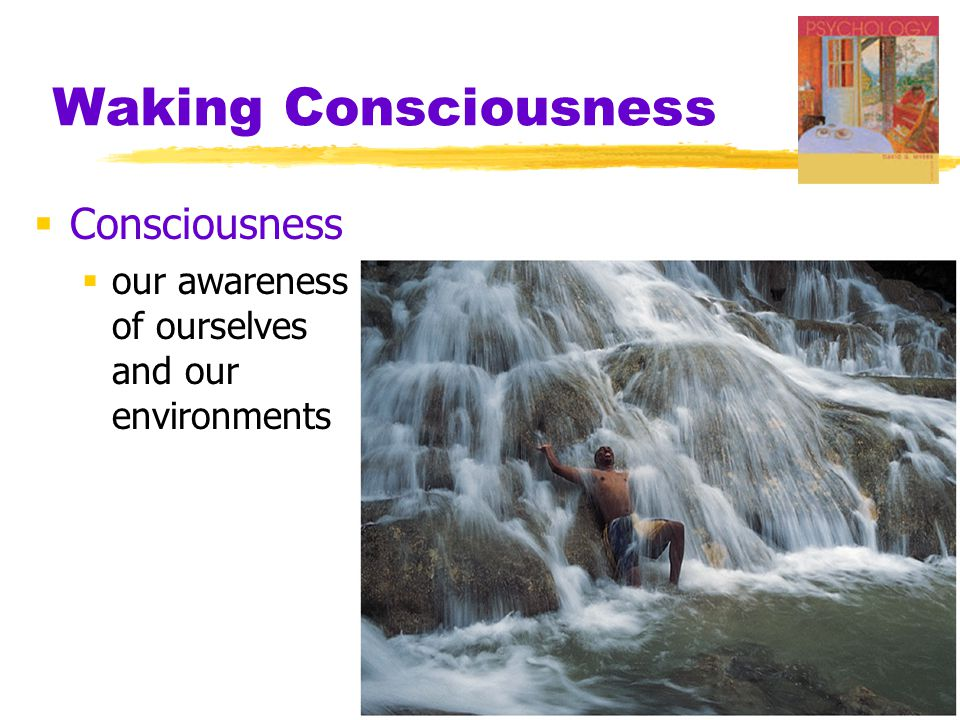 Waking Consciousness  Consciousness  our awareness of ourselves and our environments
