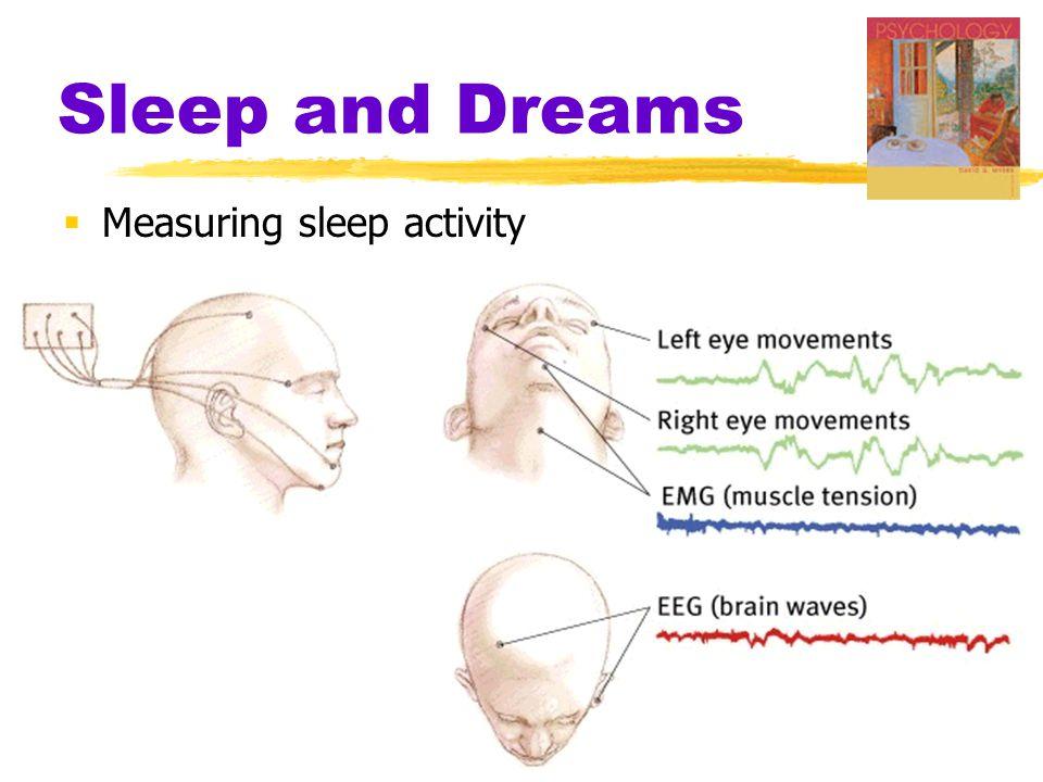 Sleep and Dreams  Measuring sleep activity